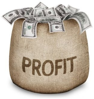 Can you make a profit through a betting guide?