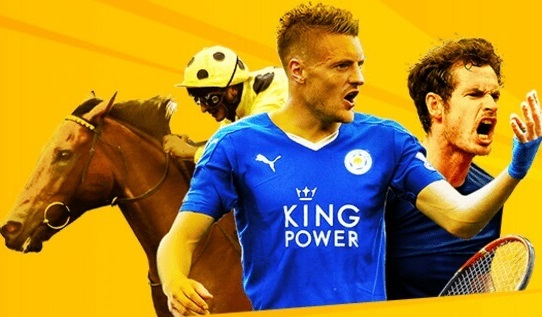 find information about the betfair license