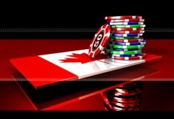 Best sports betting sites canada the best way to bet on horse races