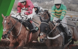 Horse racing betting at Unibet